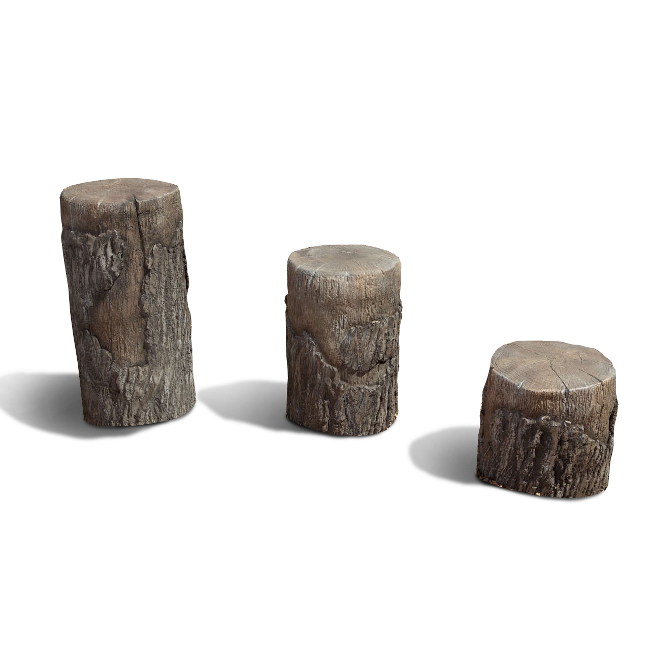 Tree Stumps By Naturerocks For School Age Kids Aaa State
